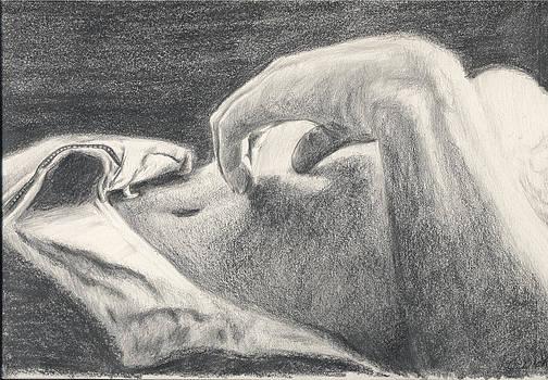 Noggin by Charles  Bickel