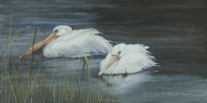 NOMADS-American White Pelicans by Patricia Mansell