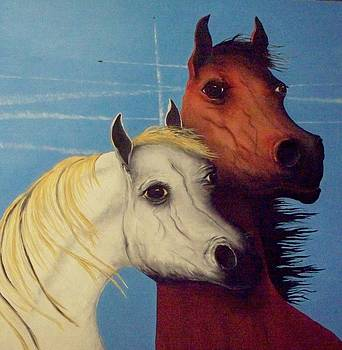 Chemtrail Ponys by Patrick Trotter