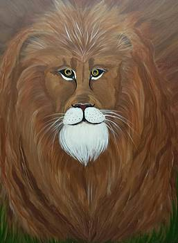 Norak The Lion by Paula Marley