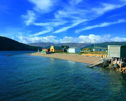 Norris Point Newfoundland by Patricia Januszkiewicz