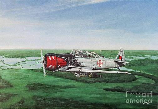 North American T6 G Texan by Carlos De Vasconcelos Tavares