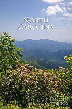 Jill Lang - North Carolina Mountains