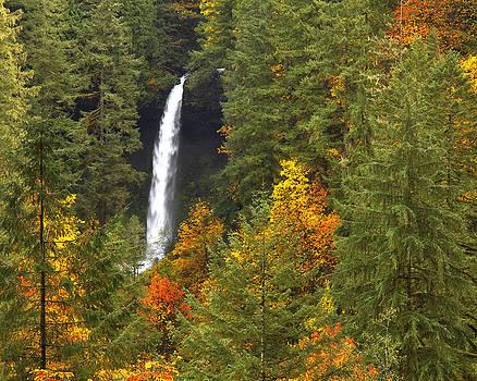 North Falls by Wade Crutchfield