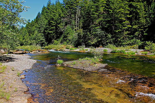 North Fork River by Tim Rice