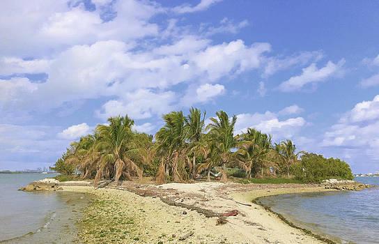 North Miami Bay by Tropigallery -