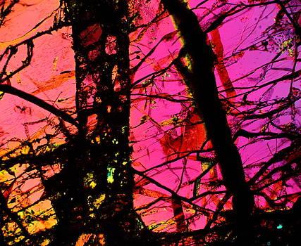 Fire Storm by Hodges Jeffery