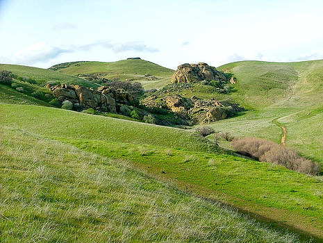 Northern Californian Spring Hillside along Vasco Road Livermore CA by G Matthew Laughton