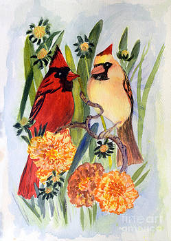 Donna Walsh - Northern Cardinal