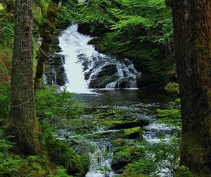 Northern Falls by Deborah Knolle