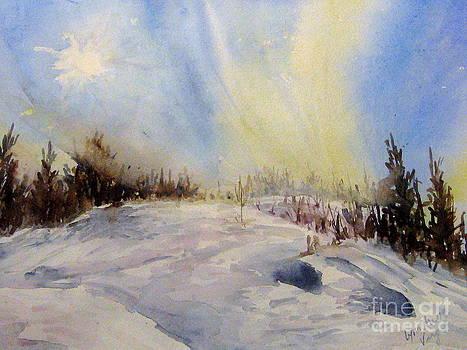 Northern Light by Lynn Cheng-Varga