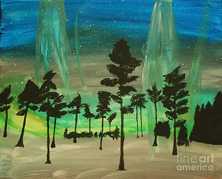 Northern Lights  by Ashley Van Artsdalen