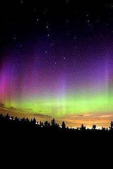 Northern Lights by Dream Katches Photography