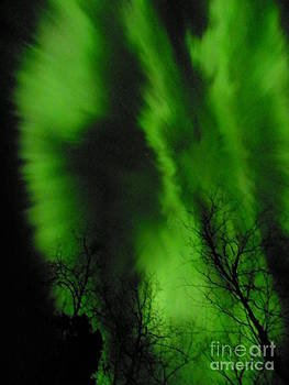 Northern Lights by Jennifer Kimberly