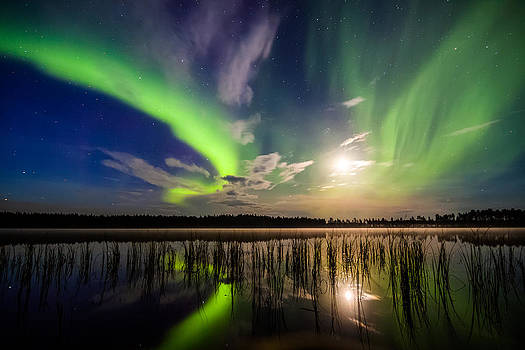 Northern lights over a lake by Mikko Karjalainen