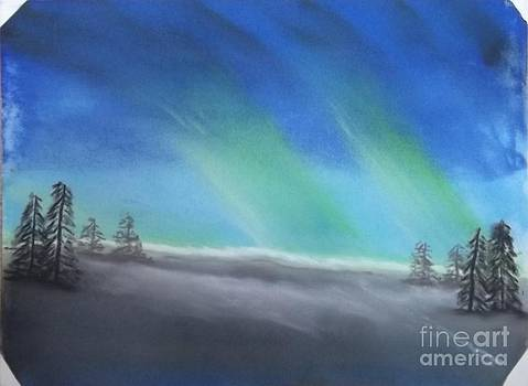 Northern Lights by Tracey Williams