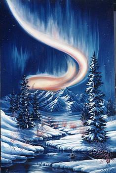 Northern Nights by Lori Salisbury