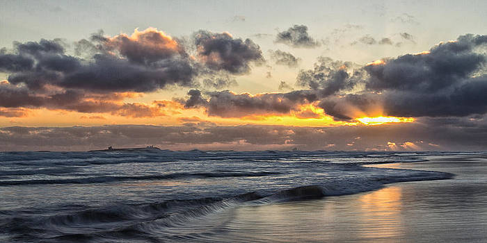 David Pringle - Northumbrian Coast