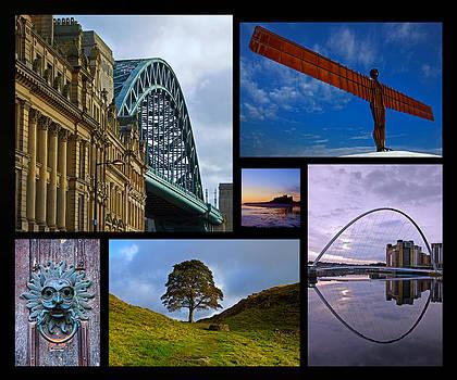 David Pringle - Northumbrian Landmarks