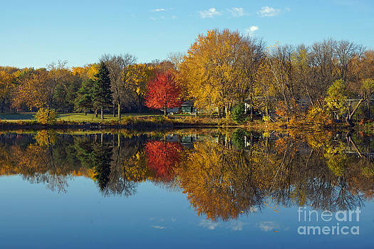 Northwood Lake October Shoreline by Robin Clifton