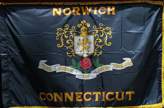 Norwich Flag by Geoffrey McLean