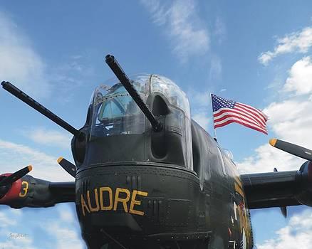 Joe Duket - Nose Guns of B-24