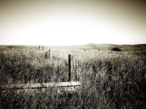 Terry Eve Tanner - Nothing Here But Us Fence Posts
