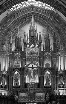 Veronica Vandenburg - Notre Dame Black and White