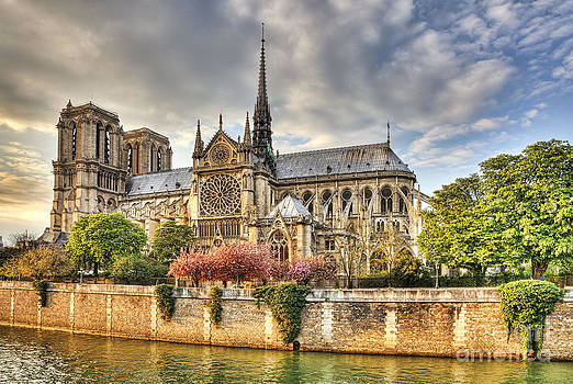 Notre Dame de Paris Cathedral by Radu Razvan