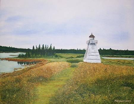 Nova Scotia Lighthouse by Mary Ann Leake