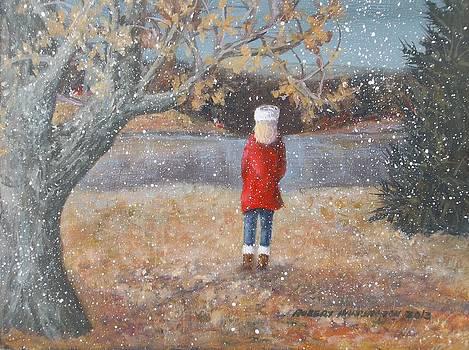 November Flurries by Robert Harrington