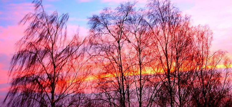 Even The November Sky Might Bring Some Hope  by Hilde Widerberg