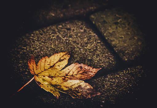 November Street by Odd Jeppesen