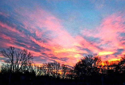 November Sunset by Jan Law