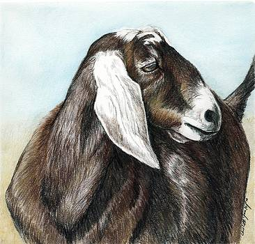 Nubian Goat by Charlotte Yealey