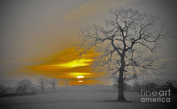Darren Burroughs - Nuclear Sunrise