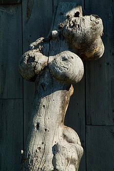 Nude Female by Devinder Sangha