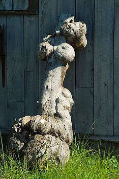 Nude Female figure in Nature by Devinder Sangha