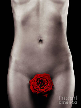 Nude Woman Body with a Red Rose by Oleksiy Maksymenko