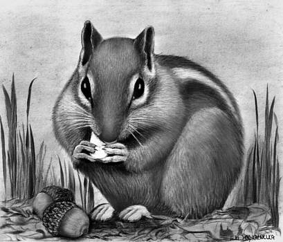 Nutty Fare by Miki Krenelka