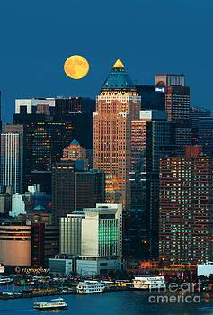 Regina Geoghan - NYC Harvest Moon