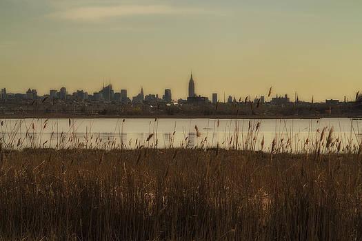 Nyc Landscape by Joseph Hedaya