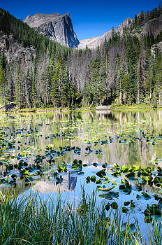 Nymph Lake by Larry Fisher