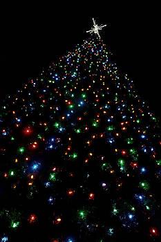 Joann Copeland-Paul - O Christmas Tree