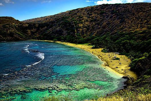 Oahu beach by Joanna Madloch