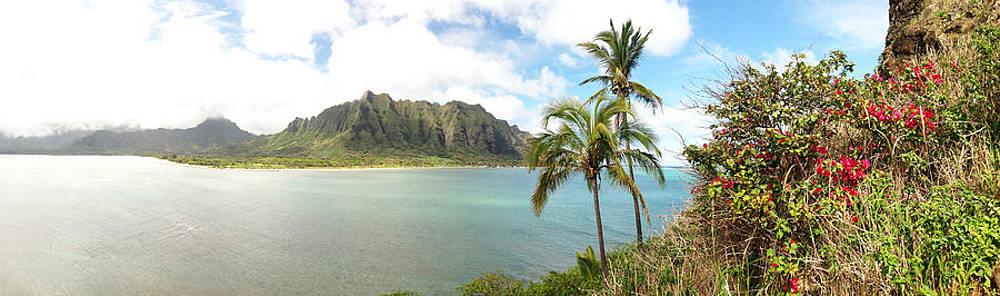 Oahu Hawaii Kualua Chinamans Hat by Tropigallery -