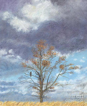 Oak and Clouds by Jymme Golden