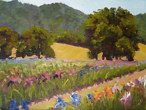 Oak and Iris by Linda Rosso
