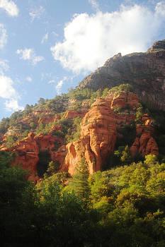Oak Creek Canyon by Valerie Loop