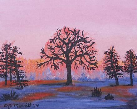 Oak Tree Sunrise by Dorothy Merritt